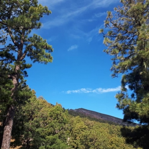 BLUE, BLUE SKIES OF LA PALMA
