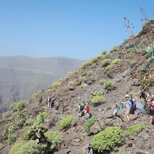 La Gomera - long line of walkers
