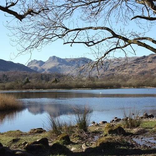 Guided walking in the Lake District-By the banks of Elderwater Lake - Lake District