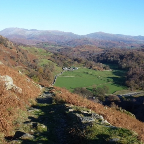 Guided walking in Lake District Autumn scene