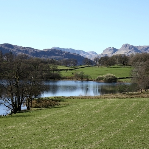 Guided walking - Pastoral scene - Lake District
