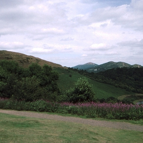 Guided walking in Malvern Hills - below Worcestershire Beacon