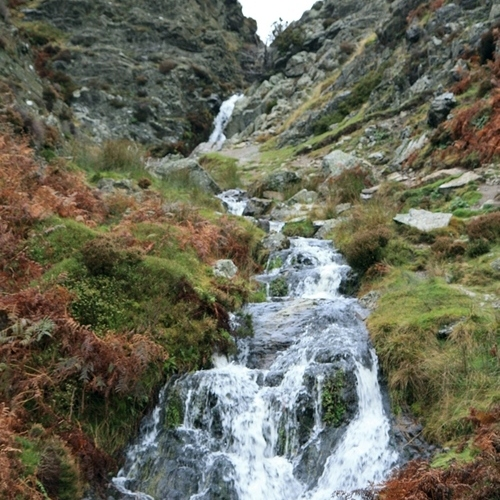 Guided walking in Shropshire Hills - Ashes Hollow