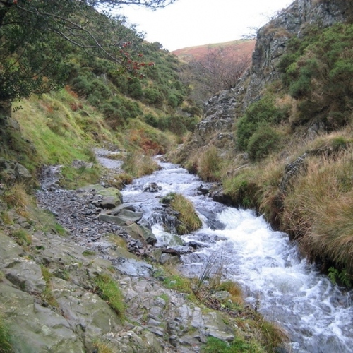 Guided walking in Shropshire Hills - babbling Ashes brook