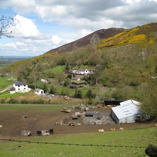 Guided walking in Shropshire Hills - Caer Carodocs slopes
