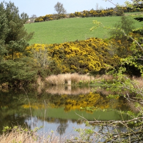 Guided walking in Shropshire Hills - The Bog Mine head